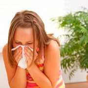 Alergia – letnie zagrożenia