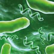 koniec antybiotykow