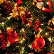 Maja Popielarska - Święta z pomysłem